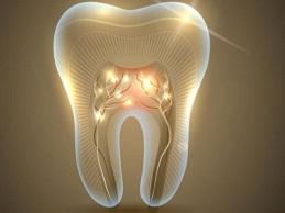 endodonziaspec